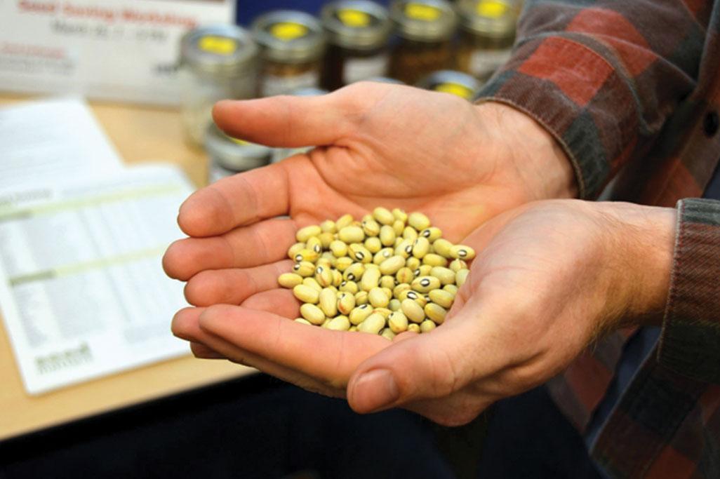 Victoria Bc Free Food Resources